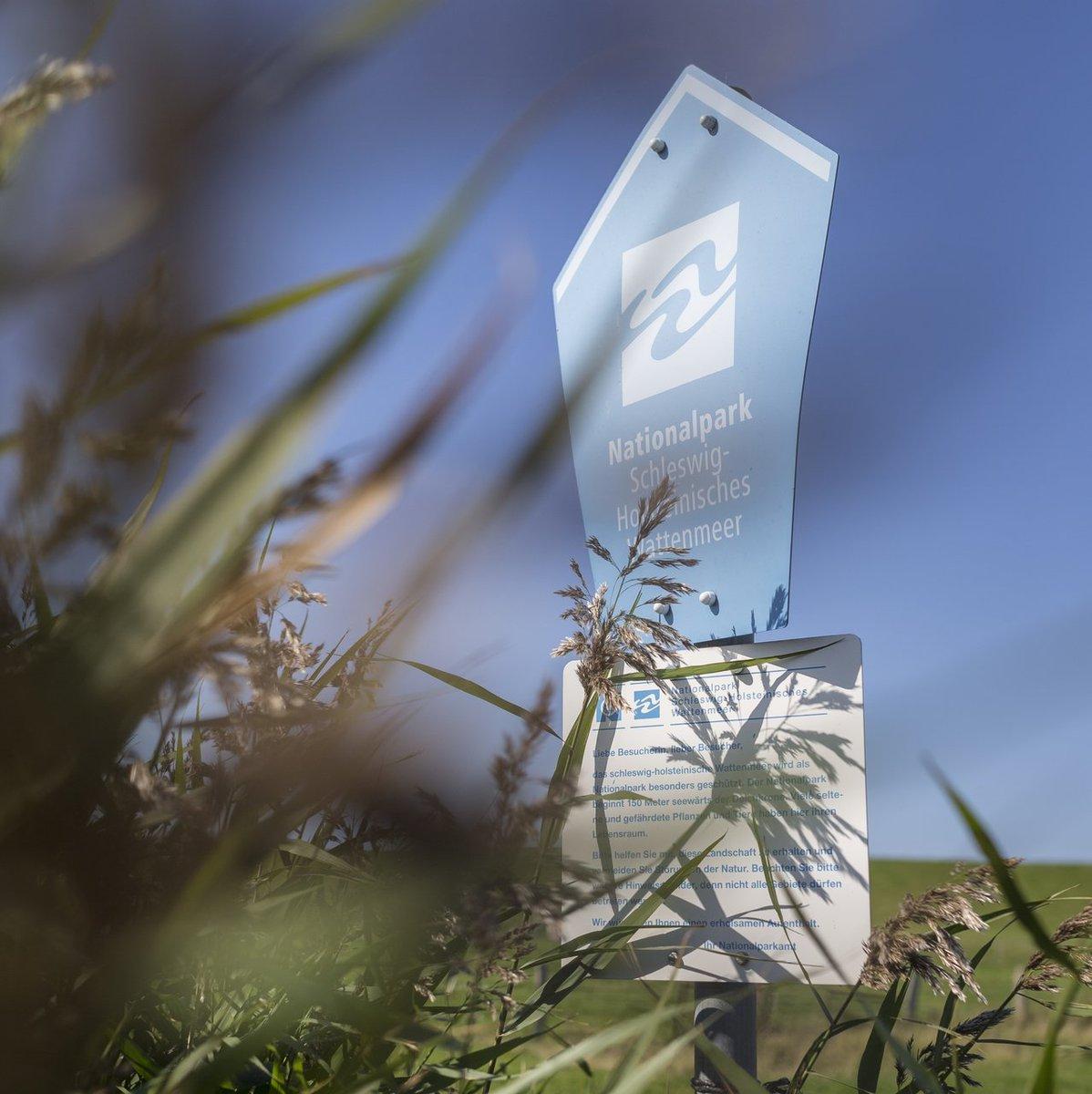 """""""Unser"""" Nationalpark Schleswig-Holsteinisches Wattenmeer ist der Größte zwischen dem Nordkap und Sizilien. https://t.co/jiXV0W8uN8"""
