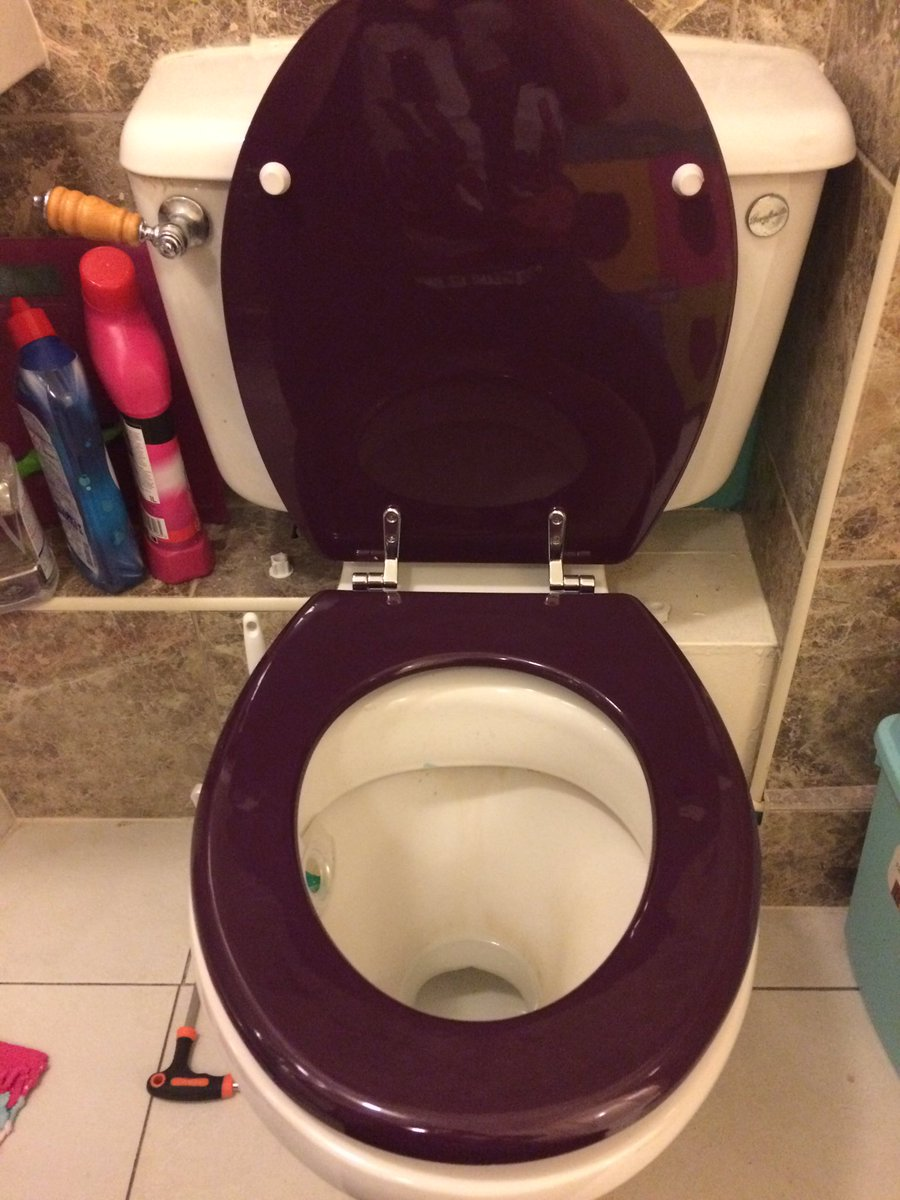Apart from buying my flat - this is the most grown up thing I've ever done...change a toilet seat