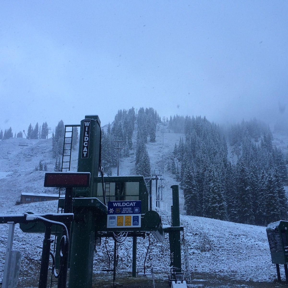 Boom! Welcome snow. Let's party! #alta #ski #snow #stoked #winter https://t.co/pFaOrU47qT