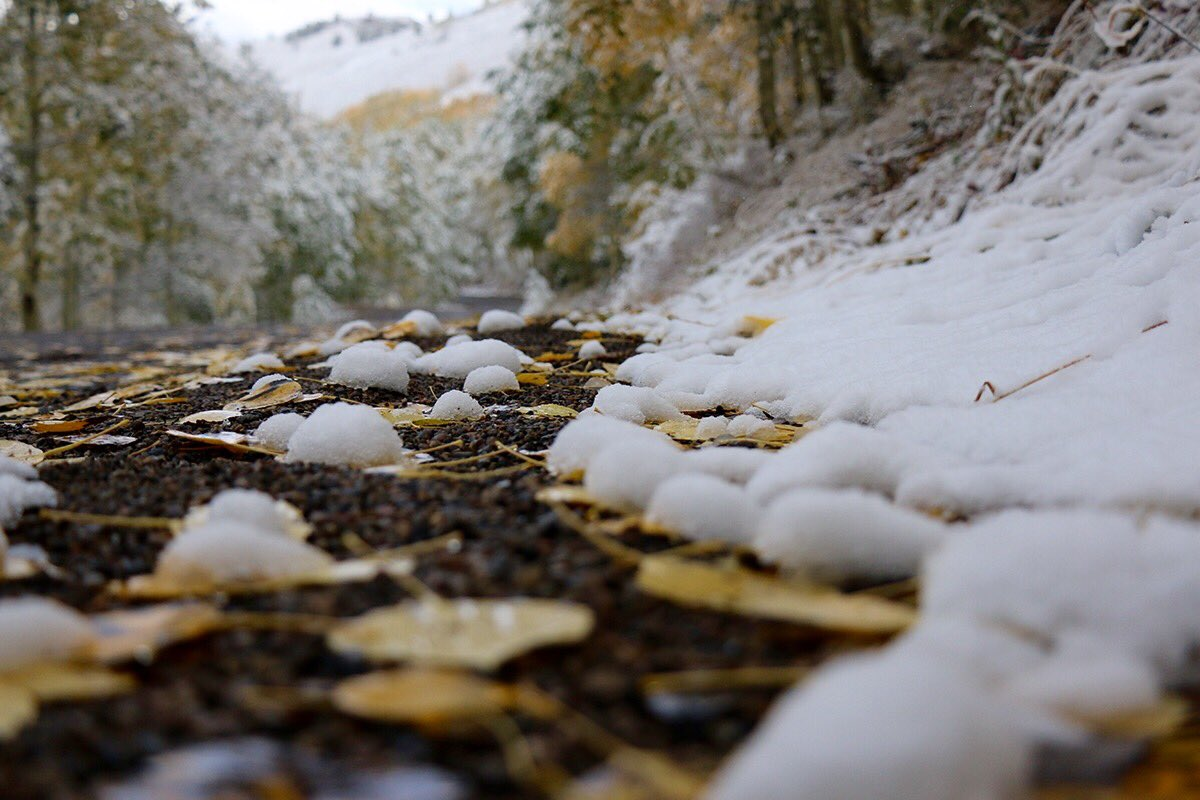 The rumors are true-- it snowed in Park City #firstsnowfall #winteriscoming #waitingforwinter https://t.co/0xpmfrhHI4