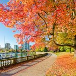 This is what youve been waiting for. 10 places to see fall leaves in and around #Vancouver https://t.co/2UTKZaJx3e https://t.co/vZgDaCCDDP
