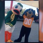 A duck can pull a truck!!!!!!! #BeatFlorida #GoVols !!!! https://t.co/5OgdLgNdpB