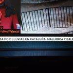 Ahora Mallorca no forma parte de Baleares https://t.co/HvxrfLVaBF