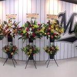 サブロー選手へたくさんのお祝いのお花が届いています。 #chibalotte #ありがとうサブロー https://t.co/vuEdxLWkZH