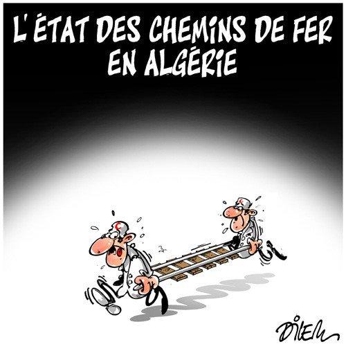 RT @ornikkar: L'état des chemins de fer en Algérie. (Par @DilemAli) https://t.co/u2uiAjPP1P
