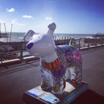 I ❤️ the concept of #snowdogsbythesea which will raise funds & awareness for @martletshospice https://t.co/wEuZNyf27d