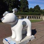 #brighton #snowdogsbythesea a great cause to raise money for @martletshospice 1 down 43 to go! https://t.co/URMu97sJxz