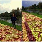 Leiši radoši novākuši ābolus https://t.co/xlUrGIMDBI