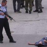 يتركوهم ينزفون حتى الموت.. كيف يقتل الاحتلال الفلسطينيين في #الخليل؟ #تهويد_الخليل https://t.co/xqXXmLnzRc