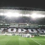 Quais torcedores do Cruzeiro estão tremendo? https://t.co/c9v4H0rdB1