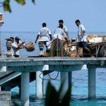 RT Badruddeen: #Maldives imposes remittance tax as tourism outlook declines https://t.co/810Q192tyy via TTG_Asia https://t.co/hWTqPegeLx