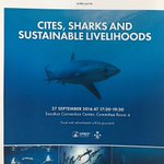"""Maldives side event at @CITES #CoP17 - """"CITES, SHARKS AND SUSTAINABLE LIVELIHOODS"""". https://t.co/vtz1OcgsQ6"""