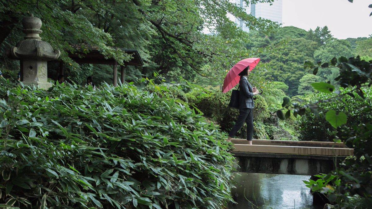 また会うかもね。もしかしたら雨が降ったら。言の葉の庭/雪野百香里(雪野先生)撮影:ゆーすけ※撮影地許可済#新海誠 #言の