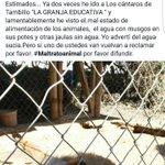 Cruel maltrato animal en granja educativa camino a Ovalle @eldia_cl @RedCoquimbo @__ACetrero71 @AndreaAndrea977 https://t.co/h2m09sqRgN