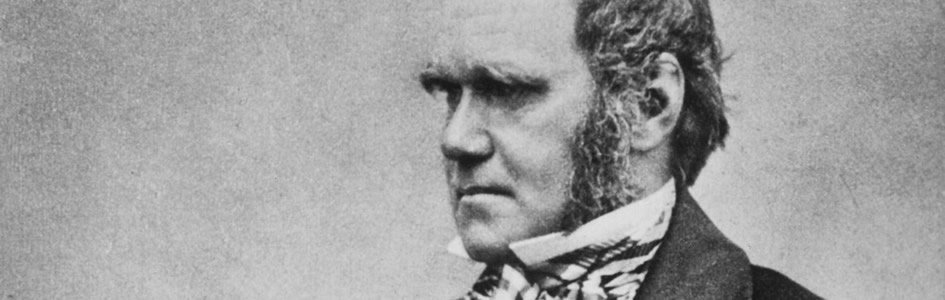 Darwinian evolution was and still is inherently a racist philosophy. https://t.co/wztY7MXxrO https://t.co/3McYvCfzv8