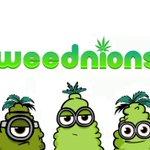 https://t.co/RALCiUJE9O [Vídeo] Nuevo vídeo de Los WeedNions https://t.co/M6MFhPNsiS