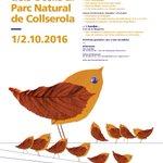 Aquest cap de setmana celebra el #DMOcells al #ParcNatural #Collserola Act. gratuïtes https://t.co/t8MXk6FmAx https://t.co/gE3mXo44mc