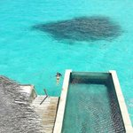 The Maldives Islands | Six Senses Laamu Maldives https://t.co/E2Msc6FCdY