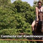Ci sembra proprio che @_Silvia_Farina si stia divertendo un sacco! #pechinoexpress https://t.co/imPV1ABOhj