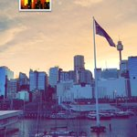 Glorious #Sydney mornings. https://t.co/HL8doHi2lq