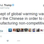 yes @realDonaldTrump you did say climate change was a hoax created by the Chinese. we have the receipts #debatenight https://t.co/ZJJ0gWCAIS