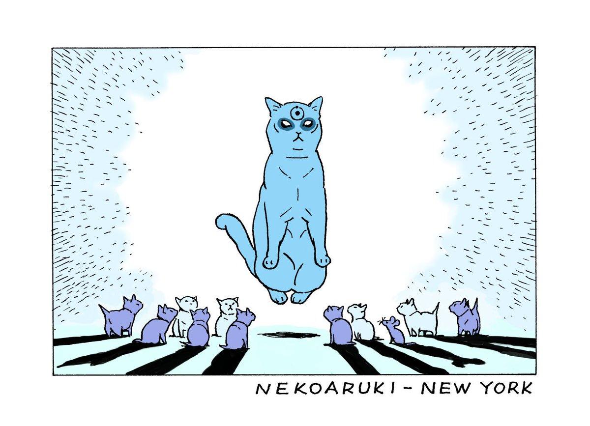 BSプレミアム『岩合光昭の世界ネコ歩き』9月28日(水)夜9時放送予定の新作は「ニューヨーク」だそうです。ゆだんしないように見張らなければ。https://t.co/wT0uICvNE8 https://t.co/4ah9BxXxtP