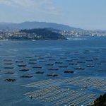 Un océano ácido provocará cambios nos nutrientes das rías galegas - Os efectos do cambio… https://t.co/4LqKEcKwCs https://t.co/663C6Ewmr7
