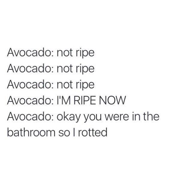 #avocadoproblemz #theproteinbar https://t.co/9bcywvJSmT