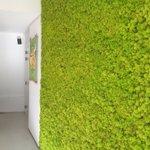 Werkbezoek Duurzaam Den Haag @duurzaam_dh wat een inspirerende groene plek midden in de stad! https://t.co/D0uQBUcF7F