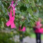 Octobre rose : un mois pour lutter contre le cancer du sein https://t.co/3Ea1COWh94 https://t.co/PBC7ftxBiA