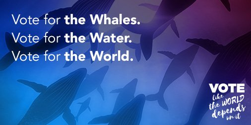 Vote for the whales. Vote for the water. Vote for the World --> https://t.co/Bs3CK7CiM1 #VoteFTW #Goal14 https://t.co/m4oP5MjA9D
