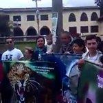 [VIDEO] Plantón en favor de la vida del oso andino en Nariño https://t.co/MJyTw0bnvt #OigoLAFm https://t.co/PKuD4mUk64