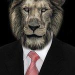 @Pancs_Rafinha @malkkav @_Carolmcosta Mas tudo vai pro STF pro leãodowski resolver https://t.co/yCgL4WOST0