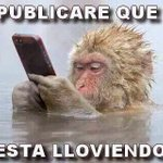 Un meme con respecto a la lluvia en la Ciudad de México #CDMX vía @Kilitaaa https://t.co/TLj85ejsq4