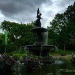 Central Park by @EricEDunn #newyork #nyc https://t.co/SPnDceyRCh