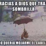 Un meme con respecto a la lluvia en la Ciudad de México #CDMX vía Kilitaaa https://t.co/KXxsE5mFo6 por #webcamsdemexico