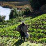 U. Nacional diseña sistema de riego para pequeños productores. https://t.co/TvDXpirrnJ https://t.co/wMxeP6PtZk