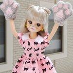 ボンジュール! 9/29は『招き猫の日』☆ 招き猫の右手は幸運を、左手は人を呼ぶんですって♪ リカは欲ばって、両方呼んじゃおうかしら♡ うふふ♡ #今日は何の日 #招き猫の日 https://t.co/OwZYUtGTM0
