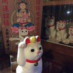 #招き猫の日 #豪徳寺 https://t.co/qEnU6C0tYC