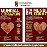 #ElDato 29 de Septiembre #DiaMundial del Corazón @GabinoCue @GobOax @AidaValenciaR @DaliaBaezArenas @jcesarmorales https://t.co/BuxtbHDKly