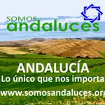 @andalucesAND #PSOEenGuerraMVT Susana Diaz  De una Nación que no reconoces te vas a otra por Ambición #AndaluciaCuenta https://t.co/QPDr7W5G9Z
