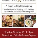 Harvest Halton is coming to #DTOakville Sun. Oct 16 from 1-4 p.m. https://t.co/EYW1yOUbay https://t.co/ezLxE8bx6P