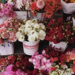 Flowers always put us in a good mood 🌷🌹🌼 // https://t.co/MWBiJwAx4r https://t.co/AIhbrXTnR0