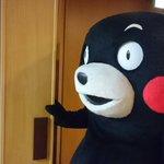 おはくま〜!今日は金曜日、あとひとがんばりかモン! pic.twitter.com/cZfH6bVF…