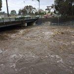 Massive flow in Torrens River at Holbrooks Rd #watermonitoring site @BOM_SA https://t.co/jw41NdCoYg #SAStorms https://t.co/6Zb9dG1BR1