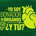 Se un héroe de vida. Jaguares de Chiapas comprometido con la donación de órganos #YoSoyDonador https://t.co/ik2M3RfFoX