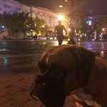 Im at Kimpton Hotel Monaco Washington DC in Washington, DC https://t.co/5Vdg4Qwbhg https://t.co/38mGamCkwP
