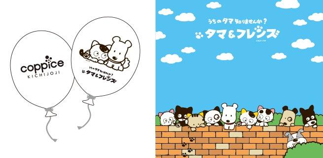 10月1日から吉祥寺で行われるイベント「吉祥寺ねこ祭り」にタマ&フレンズが参加決定!コピス吉祥寺にもタマたちがいっぱい!