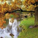 Осень Осень! Лес остыл и листья сбросил И лихой ветер гонит их за мной Осень, осень Ну давай у листьев спросим Где он май, вечный май! https://t.co/Wf6JcSfeU9