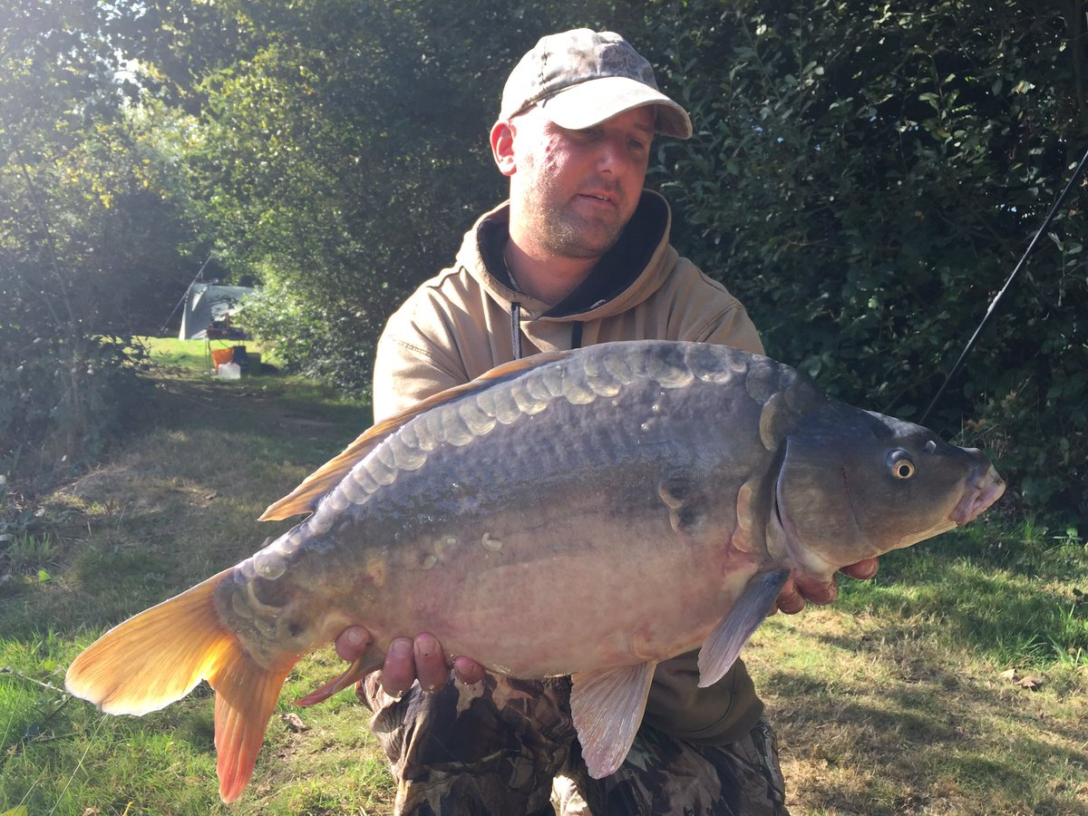 Smallest one for me so far, this one went just over 14lb <b>💪</b>�<b>💪</b>� #carpfishing